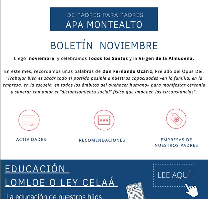 Boletín noviembre 2020